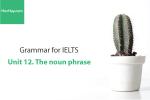 Sách Ngữ pháp tiếng anh luyện thi IELTS – Unit 12: Cụm danh từ (The noun phrase) – Học Hay