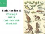Sinh Học lớp 12 - Chương 6 - Bài 24: Quá trình hình thành loài - Học Hay