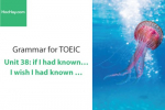 Sách Ngữ pháp tiếng anh luyện thi TOEIC – Unit 38: If I had known....I wish I had known... – Học Hay