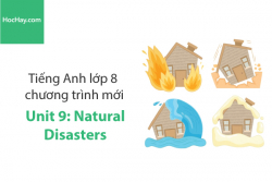 Tiếng Anh lớp 8 – Unit 9: Natural Disasters – Học Hay