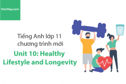 Tiếng Anh lớp 11 – Unit 10: Healthy Lifestyle and Longevity – Học Hay
