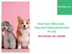 Phát âm tiếng Anh - English Pronunciation in Use Intermediate - Pets Enter, Pet Centre - Học Hay