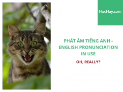 Phát âm tiếng Anh - English Pronunciation in Use Intermediate - Oh, really? - Học Hay