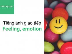 Học tiếng anh giao tiếp - Tiếng anh cho người đi làm - Cảm giác, cảm xúc - Học hay