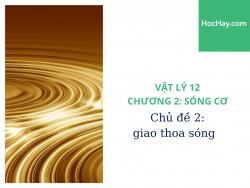 Vật Lý Lớp 12 - Chương 2: Sóng Cơ - Chủ đề 2: Giao Thoa Sóng - HocHay