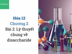 Hóa 12- Chương 2 - Bài 2: Lý thuyết chung về disaccharide