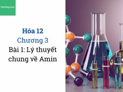 Hóa 12 - Chương 3 - Bài 1: Lý thuyết chung về Amin - HocHay