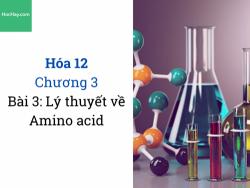 Hóa 12 - Chương 3 - Bài 3: Lý thuyết Amino acid - HocHay