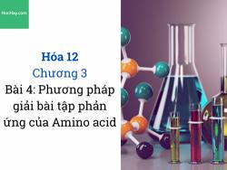 Hóa 12 - Chương 3 - Bài 4: Phương pháp giải bài tập phản ứng của Amino acid - HocHay