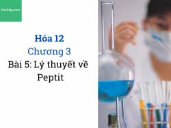 Hóa 12 - Chương 3 - Bài 5: Lý thuyết về PepTit - HocHay