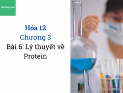 Hóa 12 - Chương 3 - Bài 6: Lý thuyết về Protein - HocHay