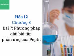 Hóa 12 - Chương 3 - Bài 7: Phương pháp giải bài tập phản ứng của Peptit - HocHay