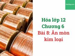 Hóa lớp 12 - Chương 5 - Bài 8: Ăn mòn kim loại - HocHay