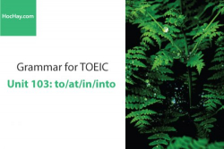 Sách Ngữ pháp tiếng anh luyện thi TOEIC – Unit 103: to/at/in/into – Học Hay