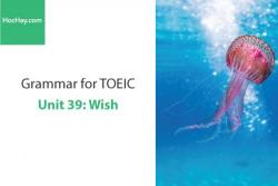 Sách Ngữ pháp tiếng anh luyện thi TOEIC – Unit 39: Wish – Học Hay