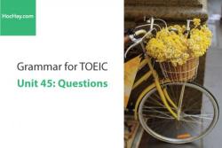 Sách Ngữ pháp tiếng anh luyện thi TOEIC – Unit 45: Câu nghi vấn – Học Hay