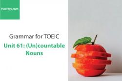 Sách Ngữ pháp tiếng anh luyện thi TOEIC – Unit 61: Danh từ đếm được và không đếm được – Học Hay
