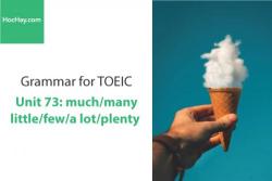 Sách Ngữ pháp tiếng anh luyện thi TOEIC – Unit 73: much/many/little/few/a lot/plenty – Học Hay