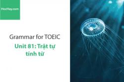 Sách Ngữ pháp tiếng anh luyện thi TOEIC – Unit 81: Trật tự của tính từ – Học Hay