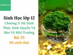 Sinh Học lớp 12 - Chương 3 - Bài 35: Hệ sinh thái - Học Hay