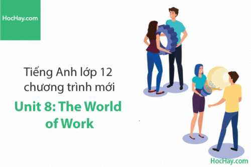 Tiếng Anh lớp 12 – Unit 8: The World of Work – Học Hay