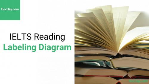 Chiến lược làm bài IELTS Reading dạng bài Labeling Diagram - Hochay