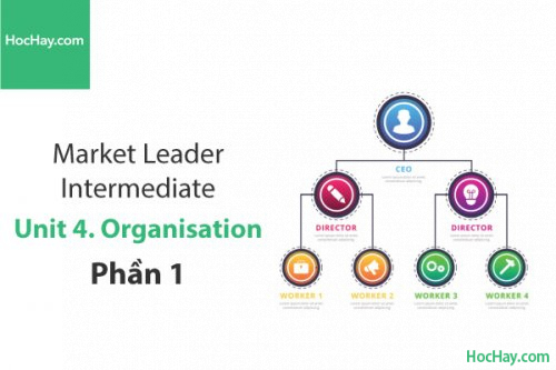 Market Leader Intermediate – Unit 4: Organisation – Học Hay (Phần 1)