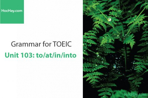 Ngữ pháp tiếng anh luyện thi TOEIC – Unit 103: to/at/in/into – Học Hay