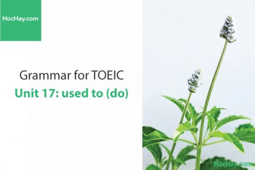 Ngữ pháp tiếng anh luyện thi TOEIC – Unit 17: used to – Học Hay