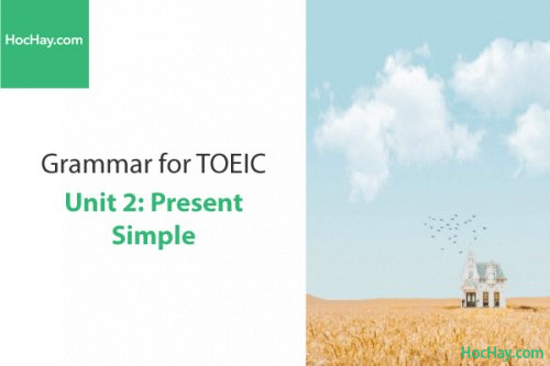 Ngữ pháp tiếng anh luyện thi TOEIC – Unit 2: Hiện tại đơn (Present Simple) – Học Hay