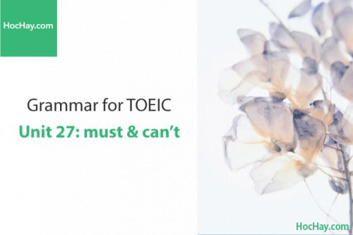 Ngữ pháp tiếng anh luyện thi TOEIC – Unit 27: must & can't – Học Hay