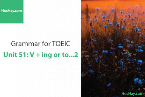 Ngữ pháp tiếng anh luyện thi TOEIC – Unit 51: V+ ing or to... 2 – Học Hay