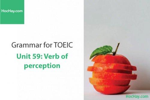 Ngữ pháp tiếng anh luyện thi TOEIC – Unit 59: Động từ chỉ giác quan – Học Hay