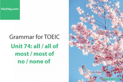 Ngữ pháp tiếng anh luyện thi TOEIC – Unit 74: all-all of/most-most of/no-none of – Học Hay