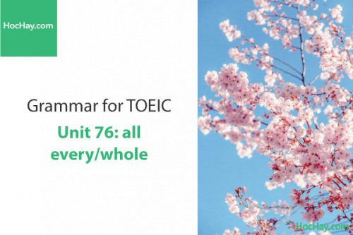 Ngữ pháp tiếng anh luyện thi TOEIC – Unit 76: all/every/whole – Học Hay