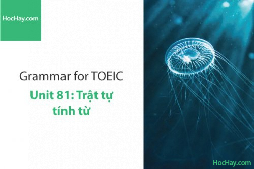 Ngữ pháp tiếng anh luyện thi TOEIC – Unit 81: Trật tự của tính từ – Học Hay