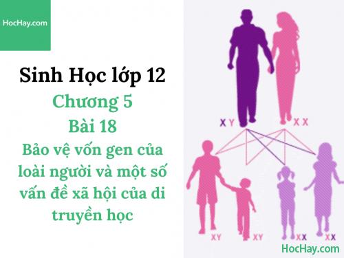 Sinh Học lớp 12 - Chương 5 - Bài 18: Bảo vệ vốn gen của loài người và một số vấn đề xã hội của di truyền học - Học Hay