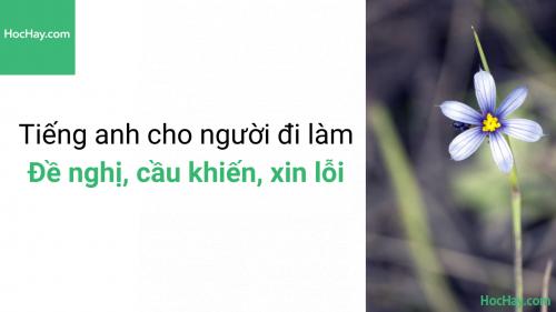 Học tiếng anh giao tiếp - Tiếng anh cho người đi làm – Cách nói lời đề nghị, cầu khiến, xin lỗi trong môi trường làm việc – Học hay
