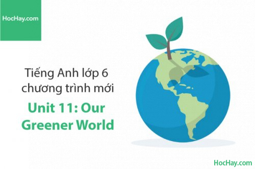 Tiếng Anh lớp 6 – Unit 11: Our Greener World – Học Hay